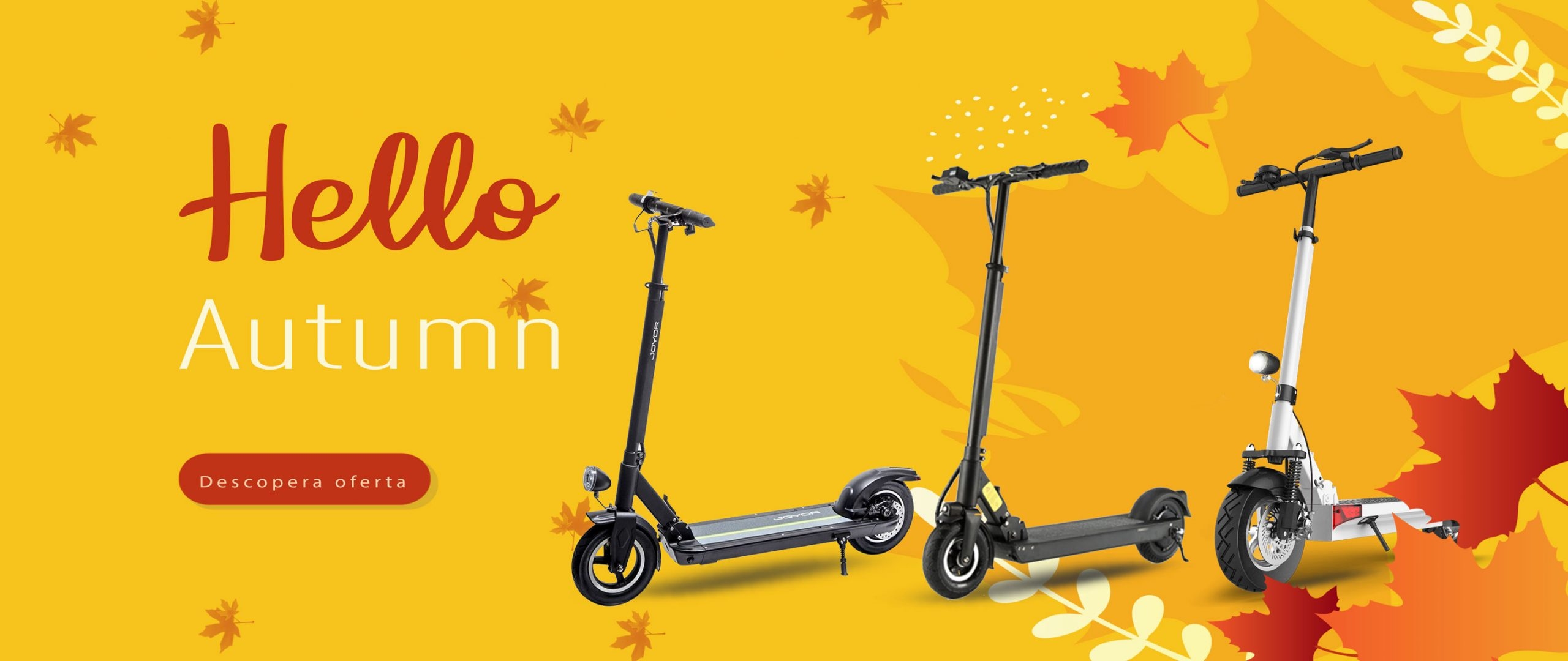 Autumn_fall_2021-Joyor-main